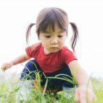 好奇心は最大の学習の種